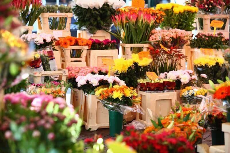 שוק הפרחים באמסטרדם